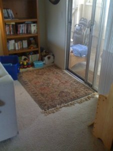 Jack's play area behind the couch (he loves it here!)